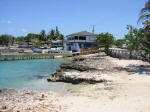 Grand Cayman Snorkeling Site George Town Cheese Burger Reef