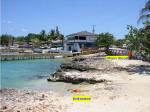 Grand Cayman Scuba Diving Location George Town Cheese Burger Reef