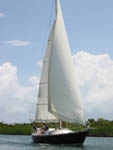 Grand Cayman Cruise Ship Excursions with Red Baron Charters