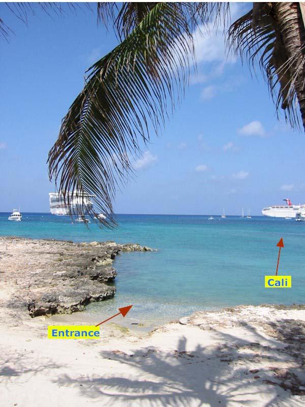 Grand cayman swingers sex Spring Break Cruise Day 2: Soldiers & Swingers - Miami Beach