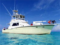 Cayman Luxury Yacht Charters